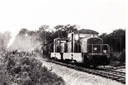LT série n°10 à 12 en UM entre Parentis et Ychoux (déc. 1954)